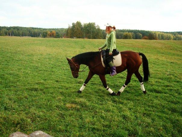 natural horsemanship essay Dressage naturally: dressur im sinne des natural horsemanship 5 out of 5 based on 0 ratings 1 reviews.